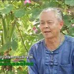 """สื่อวีดิทัศน์ ชุด """"บทบาทเกษตรกรไทย"""" ตอนที่ 13 ลุงขวัญชัย สมาชิกสภาเกษตรกรตำบลเทพราช"""