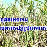 เกษตรอุตสาหกรรมน้ำอ้อยบ้านโป่ง จ.ราชบุรี