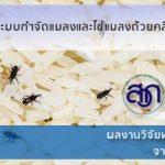 ระบบกำจัดแมลงและไข่แมลงด้วยคลื่นวิทยุ โดยสำนักงานพัฒนาการวิจัยการเกษตร (องค์การมหาชน) หรือ สวก.