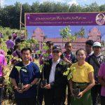 ปลูกป่าเฉลิมพระเกียรติ สมเด็จพระเทพราชสุดา สยามบรมราชกุมารี ณ วิทยาลัยเกษตรกรรมศรีสะเกษ