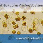 ไดอะตอมขนาดนาโน อาหารสัตว์น้ำวัยอ่อน