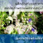 ผลิตภัณฑ์บรรเทาการหย่อนสมรรถภาพทางเพศจากสมุนไพรไทย โดยสำนักงานพัฒนาการวิจัยการเกษตร (องค์การมหาชน) หรือ สวก.