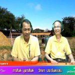 คุยกับสภาเกษตรกร ประจำวันพุธที่ 17 กรกฎาคม 2562
