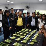 สภาเกษตรกรแห่งชาติร่วมสัมมนาและศึกษาดูงาน เรื่องการคุ้มครองพันธุ์พืชใหม่ กับกรมเจรจาการค้าฯ ณ จ.ลำปาง / เชียงใหม่