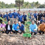 """ได้ฤกษ์! เกษตรกรปลูก """"กัญชา"""" ต้นแรกลงดินอย่างถูกกฎหมาย พร้อมเผยแพร่งานวิจัยที่ไม่มีในไทย ปี63"""